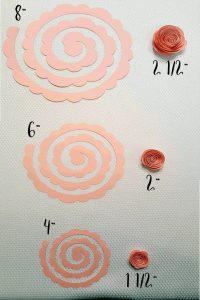 size of flat cut paper flower spirals vs. size they become when rolled up